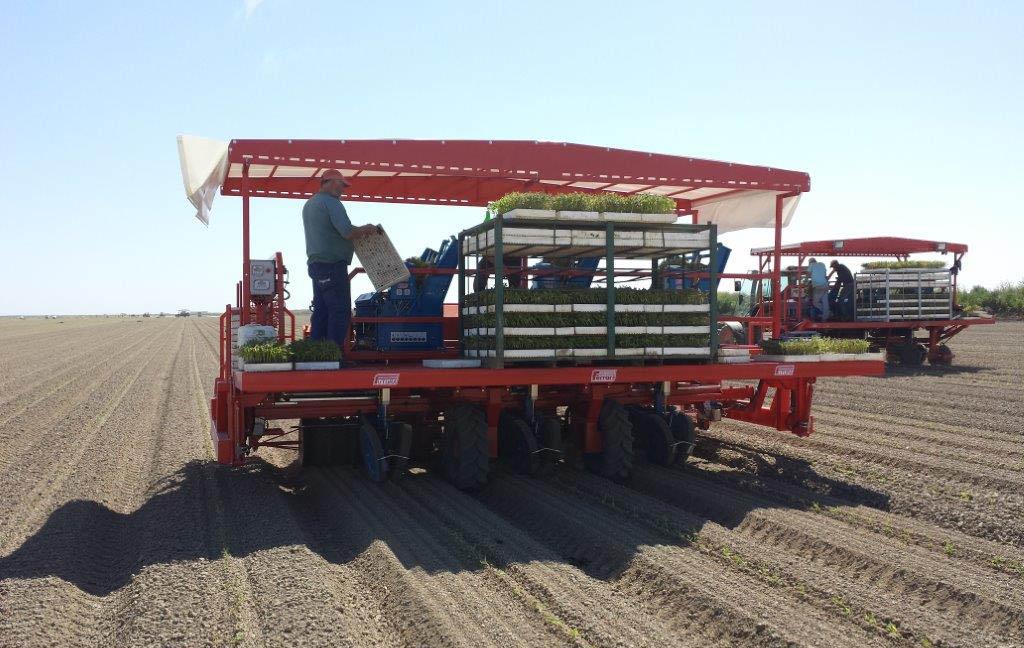 Trapiantatrice automatica Ferrari, il parco macchine Agri Italia si aggiorna