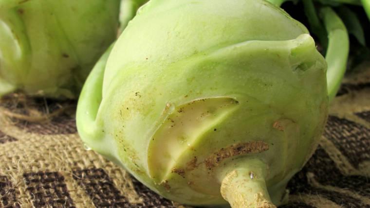 Eigenschaften von Kohlrabi und Ernährungstabelle