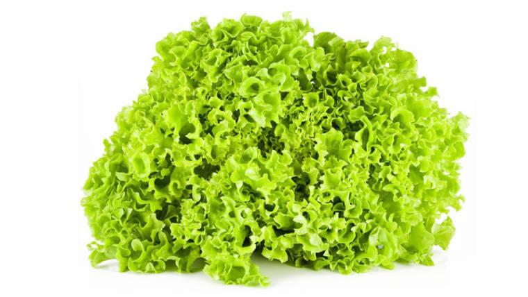 Gemüsebällchen in Lollo Verde, ein leichtes und gesundes Gericht