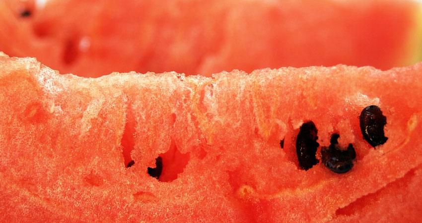 Il cocomero: in vista dell'estate vediamone benefici e controindicazioni