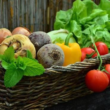 Prodotti naturali per perdere peso: scopriamo i più importanti