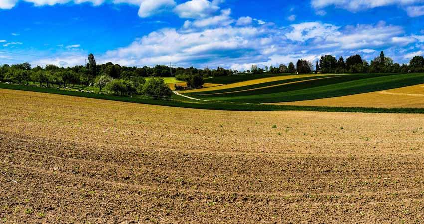 Come proteggere il tuo campo coltivato, i consigli di Agritalia