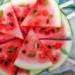 Wassermelonen vor Blattläusen schützen