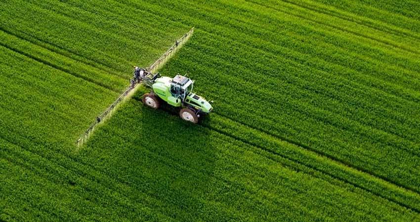 Le coltivazioni di Agritalia sono completamente OGM Free