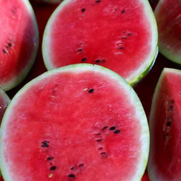 Wassermelonensamen: Eigenschaften, Nutzen und Anwendungen