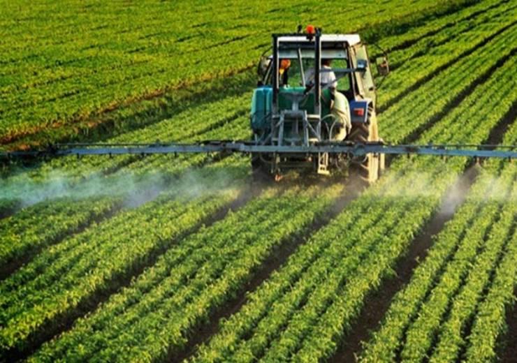 Glifosato nelle produzioni agricole, quali sono i rischi?