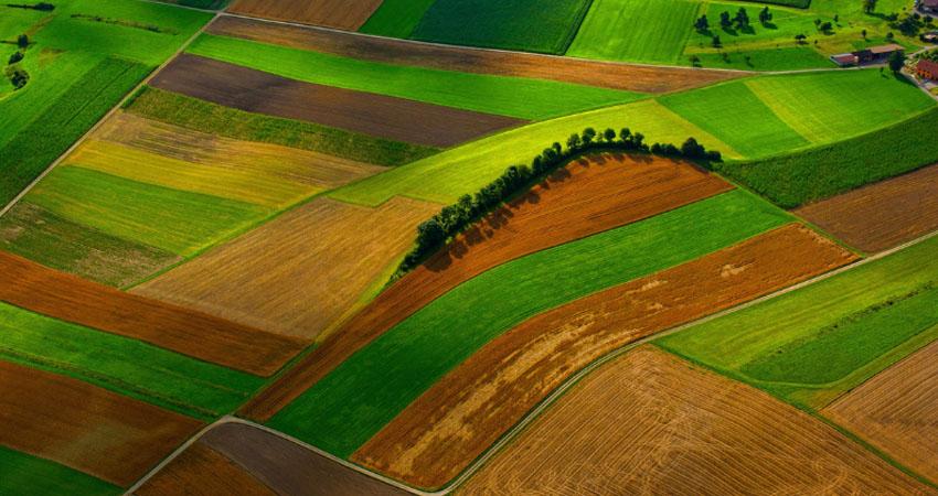 Prodotti agricoli italiani, riconosciuti come i più sicuri di Europa