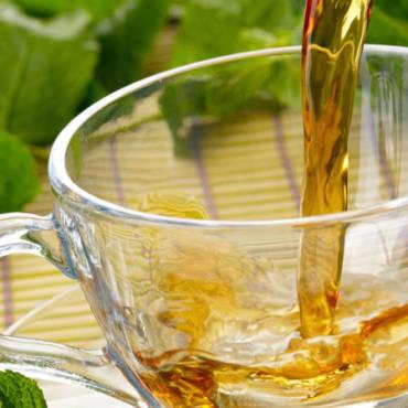 La tisana di lattuga per combattere il mal di testa