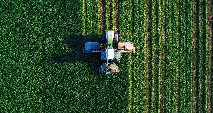 La rotazione delle colture ed i pericoli della monocoltura