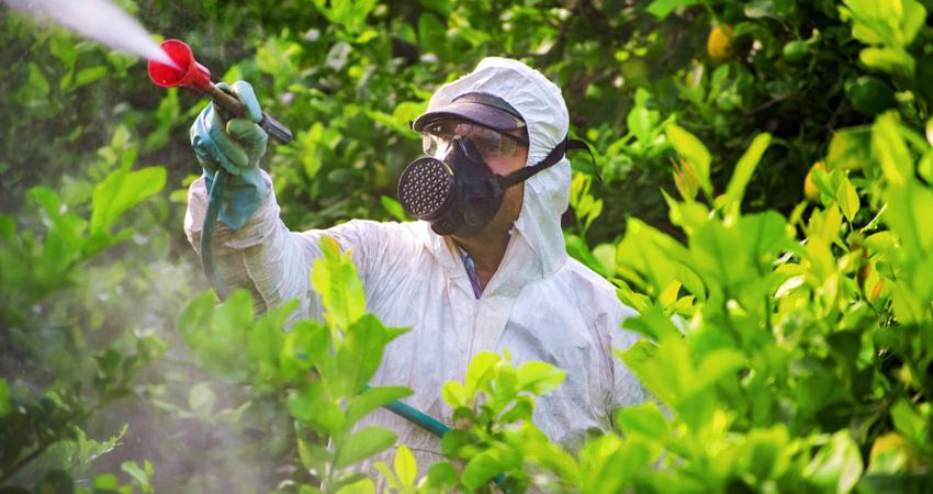 residui di pesticidi